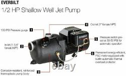 Everbilt 1/2HP Shallow Well Jet Pump 230V #J100A3 Thermoplastic Switchles